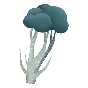 brokuła - na choroby tarczycy